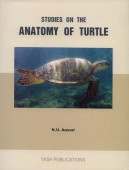 Studies on the Anatomy of Turtle - Lyssemys punctata granosa