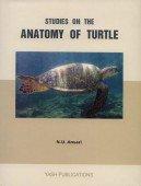 Studies on the Anatomy of Turtle - Lyssemys punctata granosa