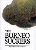 The Borneo Suckers