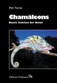 Chamäleons - Bunte Juwelen der Natur