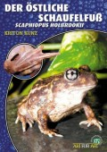 Der Östliche Schaufelfuß Scaphiopus holbrokii