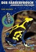 Der Färberfrosch Dendrobates tinctorius