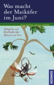 Was macht der Maikäfer im Juni? Alltägliches und Rätselhaftes über Pflanzen und Tiere