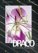 Heft 24 Spinnen,