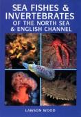 Sea Fishes & Invertebrates of the North Sea & English Channel