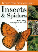 Know Your New Zealands Insects and Spiders