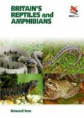 Britain's Reptiles and Amphibians - A  Guide to the Reptiles and Amphibians of Great Britain, Ireland and the Channel Islands