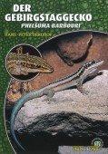 Der Gebirgstaggecko (Phelsuma barbouri)