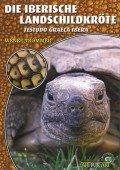 Die Iberische Landschildkröte (Testudo graeca ibera)