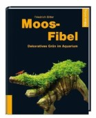 Moos-Fibel, Dekoratives Grün im Aquarium