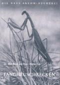 Fangheuschrecken