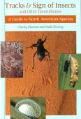 Tracks & Signs of Insects and Other Invertebrates - A Guide to North American Species