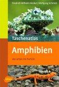 Taschenatlas Amphibien - 180 Arten im Porträt