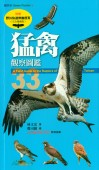 Field Guide to the Raptors of Taiwan