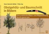 Obstgehölz- und Baumschnitt in Bildern - Eine praktische Pflanz- und Pflegeanleitung durchs ganze Jahr