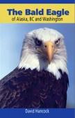 Bald Eagle Of Alaska, Bc & Washington