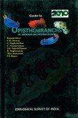 Guide to Opisthobranchs of Andaman and Nicobar Islands