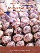 Manual on Identification of Schedule Molluscs from India