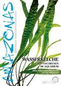 Wasserkelche – Cryptocorynen im Aquarium