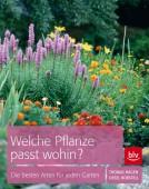 Welche Pflanze passt wohin? - Die besten Arten für den Garten