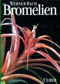 Bromelien - Tillandsien und andere kulturwürdige Bromelien