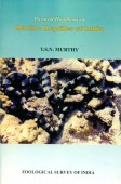 Pictorial Handbook on Marine Reptiles of India