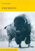 Der Bison (Bison bison)