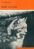 Der Luchs Lynx lynx