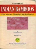Anatomy of Indian Bamboos (Culm epidermis - Morphology and Identification)