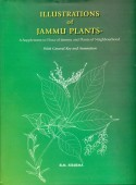 Illustrations of Jammu Plants - Flora of Jammu and Plants of Neighbourhood