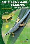 Der Blauschwanz-Taggecko Phelsuma cepediana