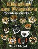 Bildatlas der Primaten Band 2 Feuchtnasenprimaten