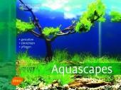 Aquascapes - Gestalten, einrichten, pflegen