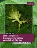 Stabschrecken, Gespenstschrecken, Wandelnde Blätter - Erfolgreiche Haltung von Phasmiden
