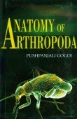 Anatomy of Arthropoda