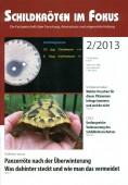 Heft 2/2013