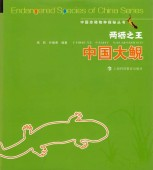 The King of Amphibian - Chinese Giant Salamander (Liangqi Zhiwang Zhongguo Dani)