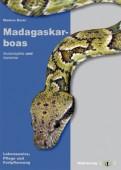 Madagaskarboas - Acrantophis und Sanzinia Lebensweise, Pflege und Fortpflanzung