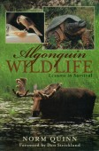 Algonquin Wildlife - Lessons in Survival