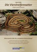 """Die Vierstreifennatter Elaphe quatuorlineata - Wissenswertes über die """"europäische Riesenschlange"""" mit Berücksichtigung verwandter Arten Östliche Vierstreifennatter (Elaphe sauromates) und Äskulapnatter (Zamenis longissimus)"""