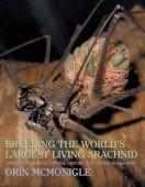 Breeding the World's Largest Living Arachnid Amblypygid (Whipspider) Biology, Natural History, and Captive Husbandry