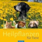 Heilpflanzen für Tiere - Phytotherapie für Hunde, Katzen, Kaninchen und Meerschweinchen;