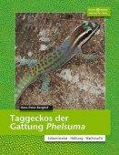Taggeckos der Gattung Phelsuma  Lebensweise Haltung Zucht