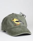 American Goldfinch – Goldzeisig