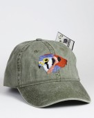 American Kestrel – Buntfalke