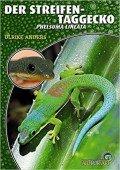 Der Streifentaggecko Phelsuma lineata