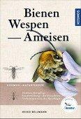 Bienen, Wespen, Ameisen – Staatenbildende Insekten Mitteleuropas