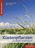 Küstenpflanzen an Nord- und Ostsee