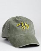 Bumble bee Poison Frog – Gelbgebänderter Baumsteiger – Drendrobates leucomelas