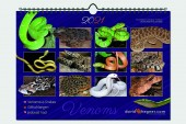 Giftschlangen/Venomous Snakes 2021